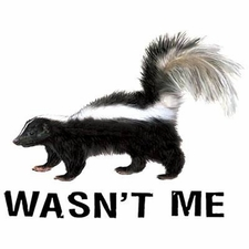 Skunk T Shirts Wholesale Wildlife - WASNT ME 08991A4