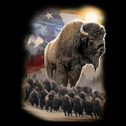 Military, Apparel, Patriotic Wholesale T-Shirts Suppliers - AMERICAN BISON