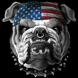 Military, Apparel, Patriotic Wholesale T-Shirts Suppliers - AMERICAN BULLDOG  19408D1-1