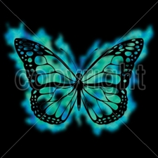 Wholesale Bulk T Shirts Funny Fashion - Wholesale - Funny T Shirts - 16158-11x8-blue-and-green-butterfly