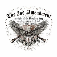 Wholesale T Shirts Hats, Military Tee Shirts, The 2Nd Amendment - a1940j