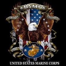 Wholesale T Shirts, Custom Clothing, Military, Bulk - Usmc T Shirts Eagle a12025c