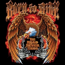 Biker T-Shirts Wholesale Bulk - 17056-12x14-born-ride-road-never-ends-eagle-skulls