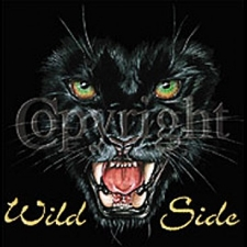 Wholesale Clothing Apparel Fashion Custom T-Shirts Supplier Bulk - Wild Side-Panther a169b