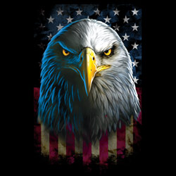 Wholesale Eagle Patriotic Printed T Shirts Bulk Suppliers - 20412D0