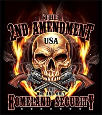 Second Amendment T Shirts Gun - S304