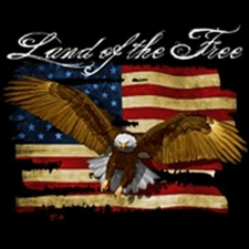 Bulk Wholesale T Shirts Military - 15792-P14 Land of the Free