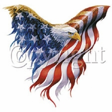 Eagle T Shirts, Wholesale Patriotic - 12260-P16