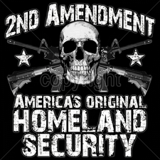 2nd-amendment-americas-original-homeland-security Gun T Shirts - 16216-13x13