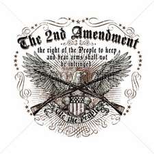 The 2Nd Amendment Guns T Shirts, Gun - A1940J