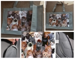 100% Cotton Canvas Recycle Bag with Cute Collection of Cats Montage