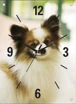 Chiwawa Wall Clock with Glass Panel
