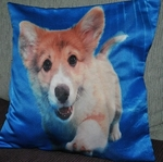 Corgi Dog Photo Cushion Covers (size 35cm by 35cm)