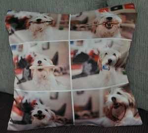 Cute Photo Montage  of Dog Fetching 6 items Cushion Covers (size 35cm by 35cm)