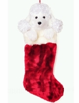 Cute Poodle Christmas Sock (Large, 50cm long)