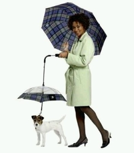 Dog & Owner Umbrella Set (Matching Designs)