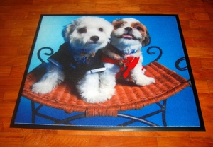 Dog Theme Floor and Door Mat, featuring a well dressed Shih Tzu & Maltese (*Premium Exclusive, sized 60cm by 90cm)
