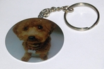 Fluffy Poodle Dog Breed - Metallic Laminated Key Chain