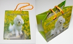 Free Promotional Gifts - Pat Pet Mini-Gift Bags