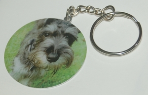 Friendly Schnauzer Dog Breed - Metallic Laminated Key Chain