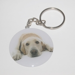 Goofy Labrador Retriever Dog Breed - Metallic Laminated Key Chain