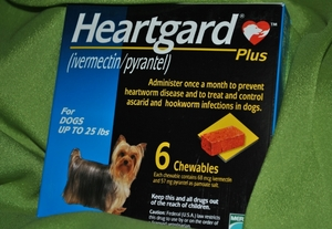 Heartgard Plus 6 chewable Tablets for Dogs upto 25 lbs (expiry date 2013 & later)
