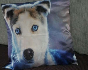 Husky Dog Photo Cushion Covers (size 35cm by 35cm)
