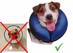 Inflatable Recovery Collar is the Best E-Collar Alternative for Dogs and other Pets