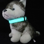 LED Night-Safety Dog Collar