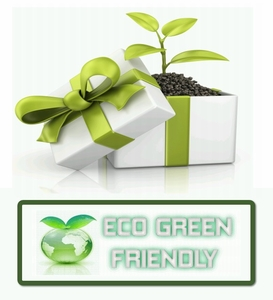 List of Eco Friendly Green Products