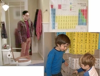 """Peroidic Table' Shower Curtains (from TV Show ""Big Bang Theory"")"