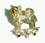 Pomerania Brooch studded Rhinestone & Large Crystal with Gold Colored Plating