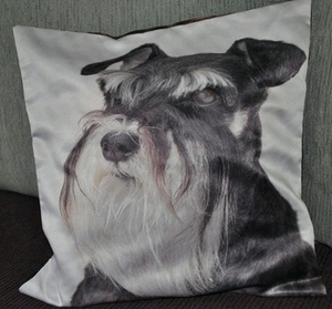 Schnauzer Dog Photo Cushion Covers (size 35cm by 35cm)