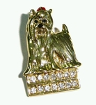 Shih Tzu Brooch studded Large Crystals with Gold  Colored Plating