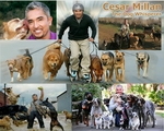 The Dog Whisperer Cesar Milan