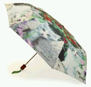 Umbrella featuring Cute Kittens