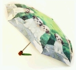 Umbrella featuring Shih Tzu Dogs