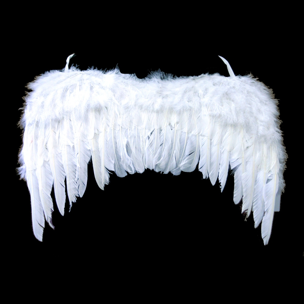 adult feather angel wings Different Pretend