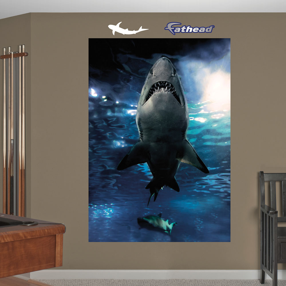 shark underwater mural realbig wall decal shark wall mural decal oceans wall decal murals