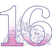 Sweet 16 Decorations & Party Supplies