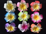 "2.5"" Inch Plumeria Flower Hair Clips - Set of 9- Assorted"