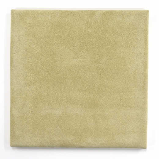 Gilder's Cushion, Suede