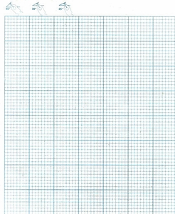 Large Paper & Ink Grid Pad