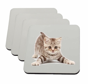 UniSub Coasters, Set of 4