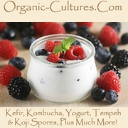 More on Traditional Food Cultures...