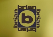 Brian x 4 Custom Personalized Wall Decal