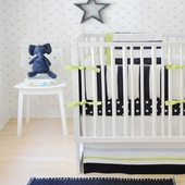 Hudson Street 2-Piece Crib Bedding Set