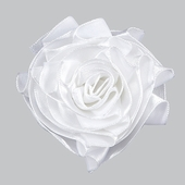 Ribbon Rose Magnet Set of 3 - White