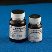 Coomassie<small><sup>®</small></sup> Stains G-250 and R-250