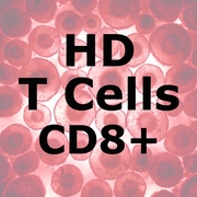 ImmunoPure<sup>™</sup> HD T Cells CD8+